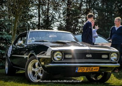 itswrap_hot_cars12