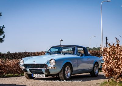 itswrap_hot_cars4